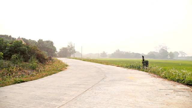HD Dolly:Curve road in a rural area next to the rice fields.