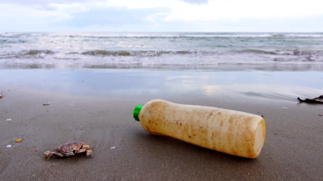 4k dolly:environmental pollution, plastic bottle on the beach. - bottle stock videos and b-roll footage