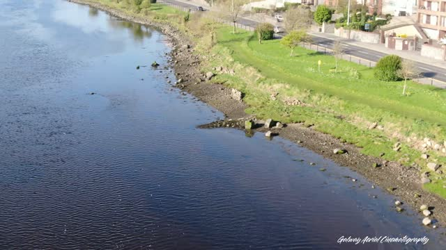 dolphins swim around galway bay, ireland in this sensational drone footage. plus a view of the holywell in lough atalia. enjoy! - cetacea stock videos & royalty-free footage