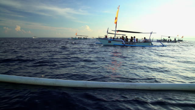 vidéos et rushes de dolphins swimming near outrigger tourist boats indian ocean - nageoire dorsale