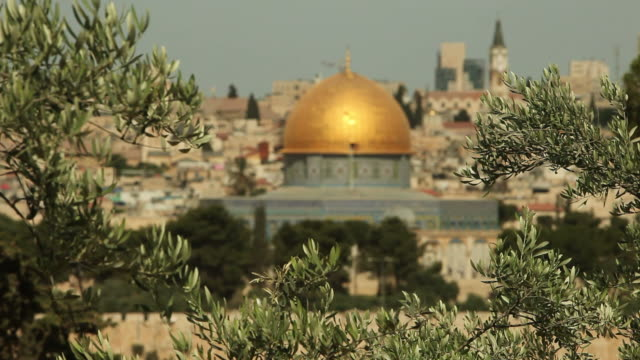 dome of the rock mosque with jerusalem and olive branches - historical palestine stock videos & royalty-free footage