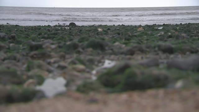 Women turned away from cashstrapped refuges ** MUSIC OVERLAY impressionistic piano music ** Various shots of pebble beach and sea with grey skies...