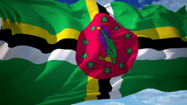 vidéos et rushes de dominique drapeau - en individuel