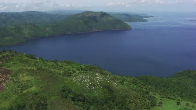dominican republic: coasts with forest - dominican republic stock videos and b-roll footage