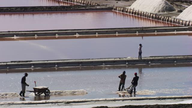 vídeos y material grabado en eventos de stock de dominican republic: salt marshes with workers - hispaniola