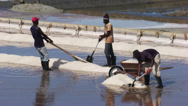 dominican republic: salt marshes with workers - salt mineral stock videos & royalty-free footage