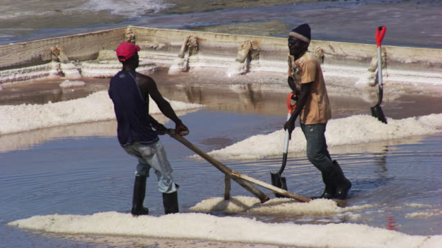 dominican republic: salt marshes with workers - 湿地点の映像素材/bロール