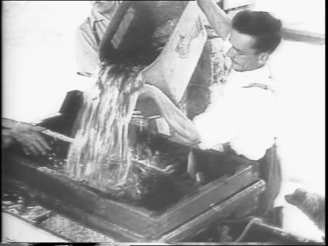 dominion drops trout from planes into depleted rivers and lakes to increase freshwater fish supply / aerial shot of fish hatchery surrounded by... - anno 1943 video stock e b–roll