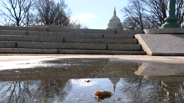 donald trump refuses to back down over steel tariffs; usa: washington dc: ext puddle on ground with steps and us capitol building in background... - 関税点の映像素材/bロール