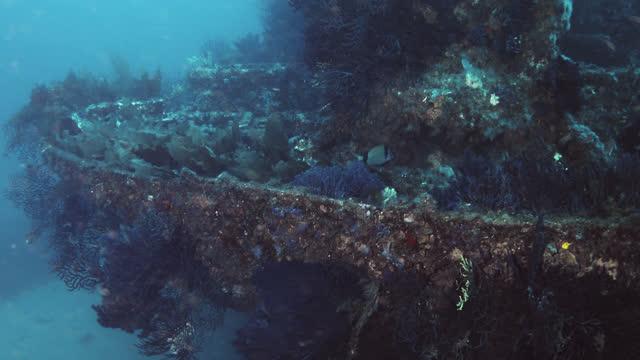 donator wreck of mediterranean sea. - aqualung diving equipment stock videos & royalty-free footage
