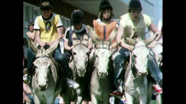 donkey race at a holiday camp in the uk; 1981 - bridle stock videos & royalty-free footage
