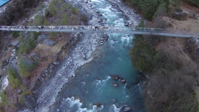 a donkey train is seen walking across a string bridge above the dudh kosi river near the town of phakding in the solukhumbu region of nepal february... - esel stock-videos und b-roll-filmmaterial