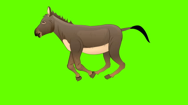 donkey walk cycle animation - mule stock videos & royalty-free footage
