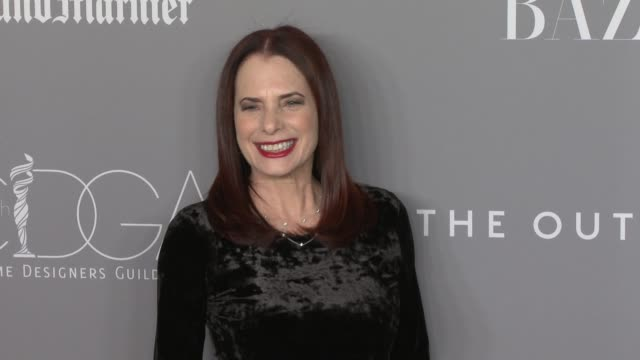 donna rosenstein at the 20th costume designers guild awards at the beverly hilton hotel on february 20, 2018 in beverly hills, california. - the beverly hilton hotel stock videos & royalty-free footage