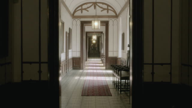 ms a doorway leading to the hallway of a home illuminated by ceiling fixtures and sunlight, with rugs covering the floors and wood wainscoting on the walls - formato panoramico con bande nere video stock e b–roll