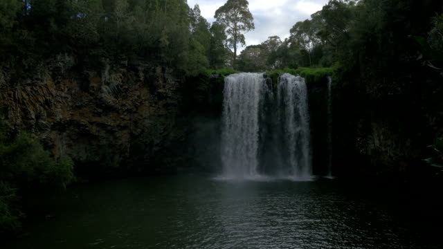 dorrigo falls - victoria australia stock videos & royalty-free footage