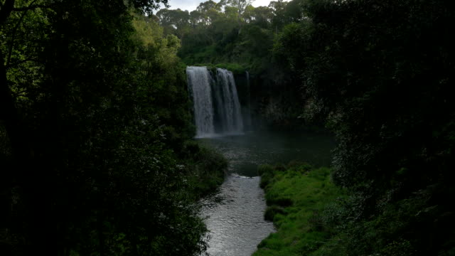 dorrigo falls - national park stock videos & royalty-free footage
