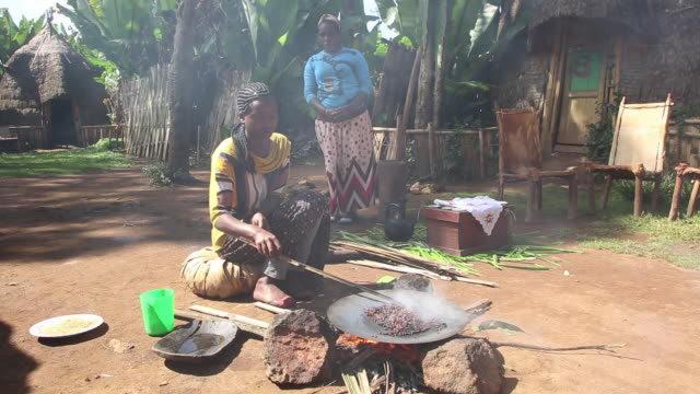 dorze woman roasting coffee on fire in the dorze village - ethiopia stock videos & royalty-free footage