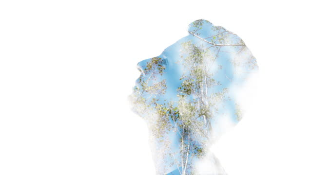 double exposure: man's face and trees - composite image stock videos & royalty-free footage