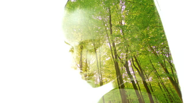 ms double exposure of a portrait of a young woman superimposed over a green forest - film composite stock videos & royalty-free footage