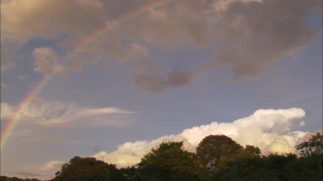 a double rainbow is seen over a rainforest. - rainbow stock videos & royalty-free footage