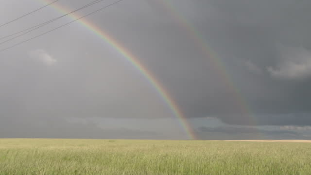 vidéos et rushes de double rainbow over a wheat field on the great plains - grandes plaines américaines