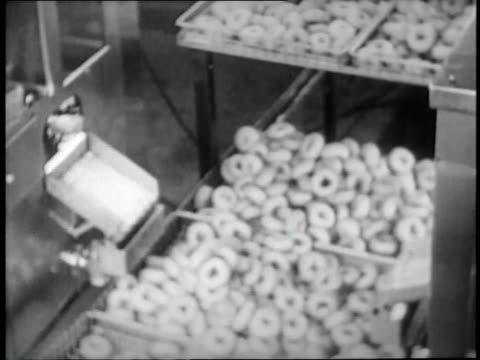 doughnuts move on a conveyor belt after being deep fried - unhealthy eating stock videos & royalty-free footage