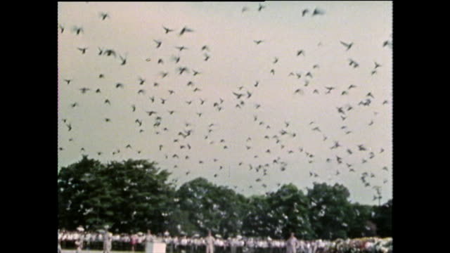 ws dove release at hiroshima memorial ceremony; 1975 - colomba video stock e b–roll