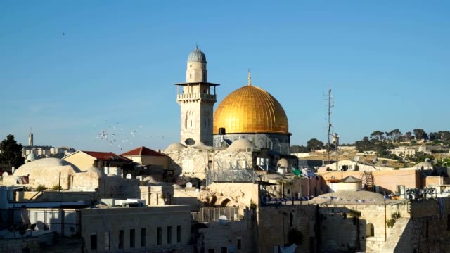 Doves fly over the Temple Mount in Jerusalem
