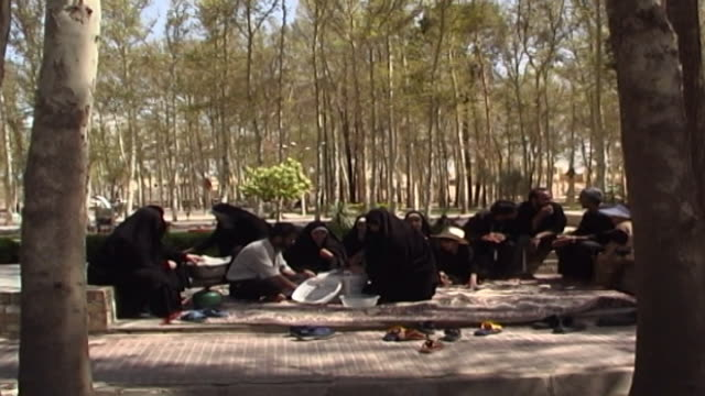 dowlatabad garden. view of an iranian family enjoying a picnic in the garden grounds. - yazd province stock videos & royalty-free footage