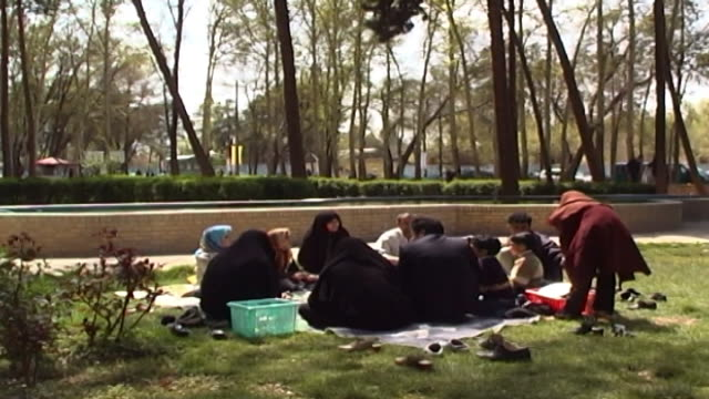 dowlatabad garden. view of an iranian family enjoying a picnic in the park. - yazd province stock videos & royalty-free footage