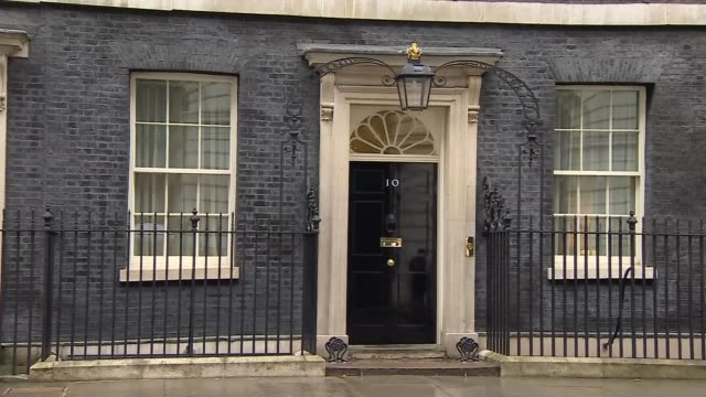 Downing Street arrivals and departures ENGLAND London Downing Street POOL Rushes Log EXT Larry the cat departs / David Gauke MP departs / Julian...