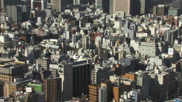 WS, HA, Downtown district, Tokyo, Japan