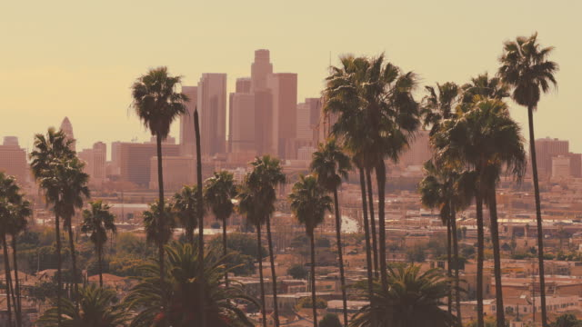 downtown los angeles 4k - hollywood stock videos & royalty-free footage
