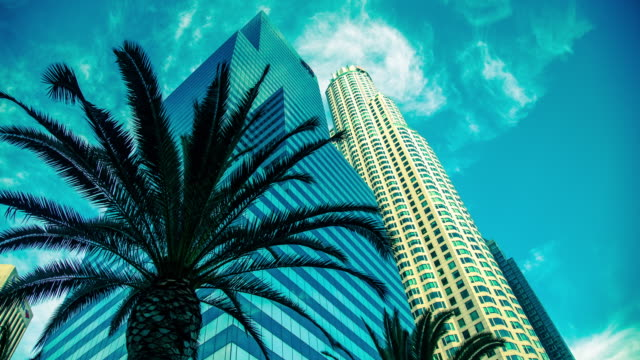 Downtown Los Angeles Palm Tree and Skyscrapers at 5th and Figuroea Timelapse