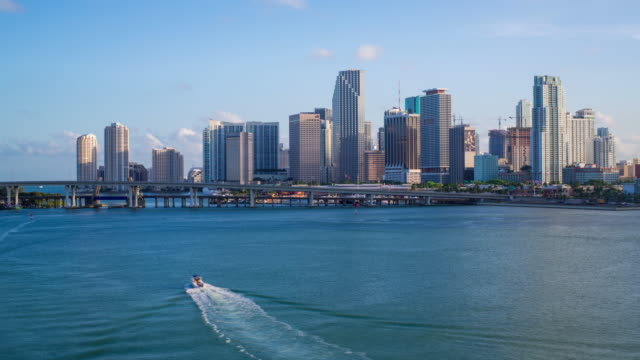 downtown miami skyline, miami, florida, usa, north america - waterfront stock videos & royalty-free footage