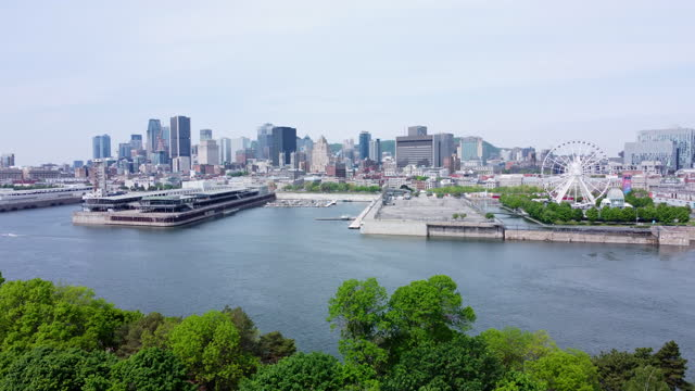 downtown montreal cityscape aerial view and st. lawrence river in summer - vieux montréal stock videos & royalty-free footage