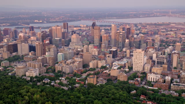 aerial downtown montreal from the mount royal, qc, canada - montréal stock videos & royalty-free footage