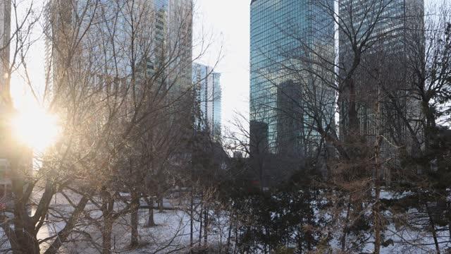 モントリオールのダウンタウンの近代的な超高層ビルは、日没時に冬に公園にパンダウン - モントリオール旧市街点の映像素材/bロール
