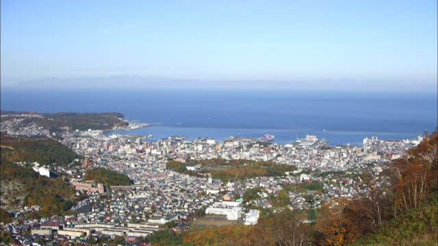 downtown otaru city, hokkaido, japan - panoramica verso il basso video stock e b–roll