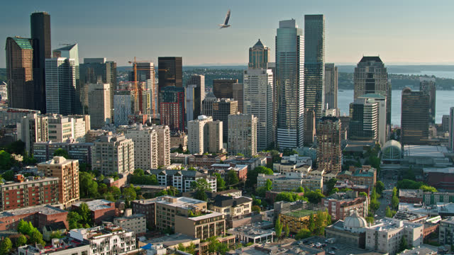 downtown seattle from capitol hill - aerial - establishing shot stock videos & royalty-free footage