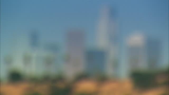 ws, focusing, downtown skyline, los angeles, california, usa - fan palm tree stock videos & royalty-free footage