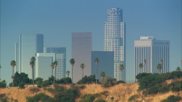 ws, downtown skyline, los angeles, california, usa - fan palm tree stock videos & royalty-free footage