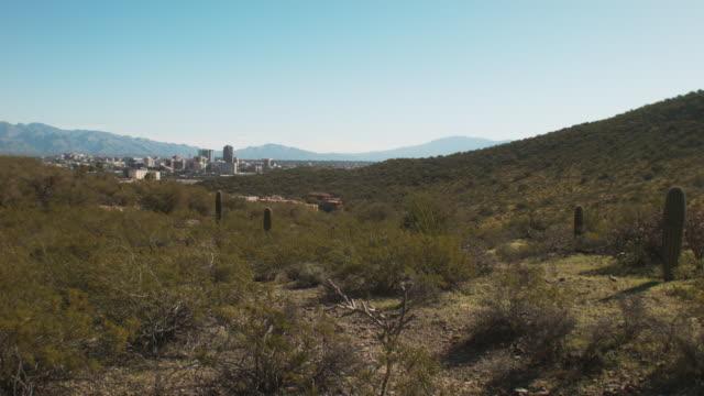 vídeos y material grabado en eventos de stock de downtown tucson arizona seen from saguaro national park - cactus saguaro