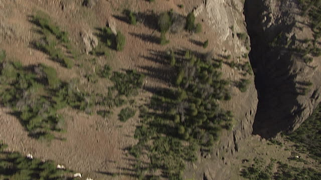 Downward Aerial of a Mountain Slope