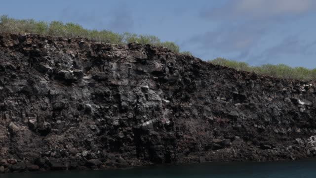 Dozens of birds flying above the rocky coast of Isla Genovesa, Galápagos, Ecuador