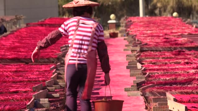 vídeos de stock e filmes b-roll de dozens of workers toil through the night coating thin lengths of bamboo in herbs spices and richly coloured powders to create incense sticks that are... - incenso