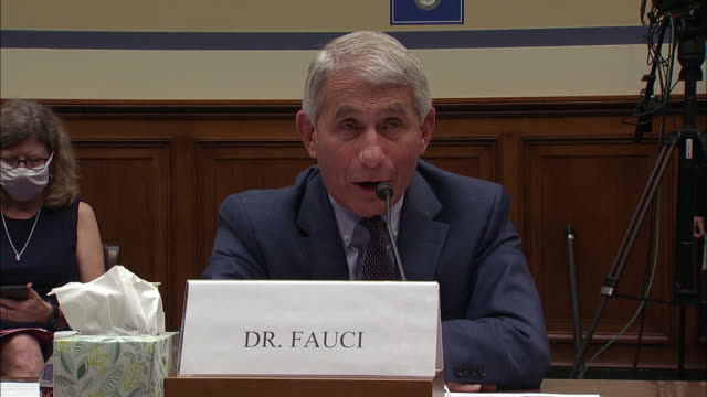 dr. anthony fauci responds to questioning from jim jordan surrounding crowds and protests in relation to the spread of the coronavirus during a house... - healthcare and medicine or illness or food and drink or fitness or exercise or wellbeing stock videos & royalty-free footage