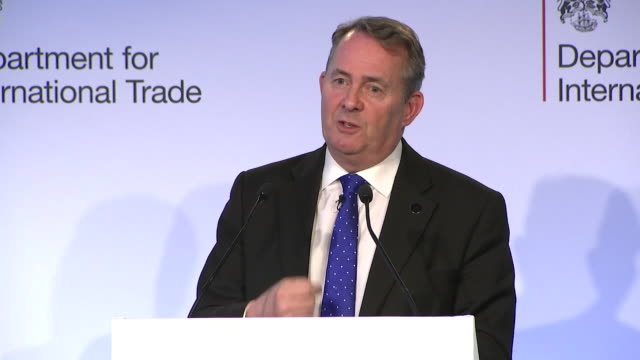 dr liam fox international trade secretary says a deal is better is than no deal - liam fox politician stock videos and b-roll footage