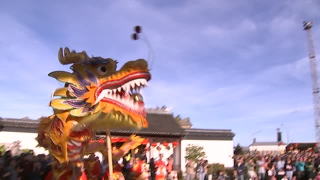 dragon and lion dance performances at the dunedin chinese garden during chinese new year celebrations - otago region stock videos & royalty-free footage